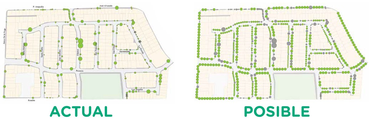 Plan Maestro de Arborización para Residencial Florida.